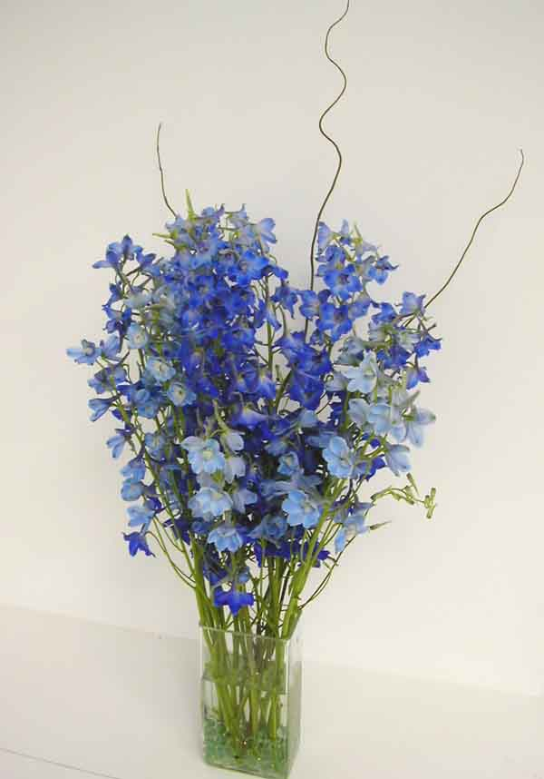 Floral Design Arrangements Blue Www Imgkid Com The Image Kid Has It